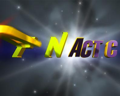 Fantactics Flying Logo